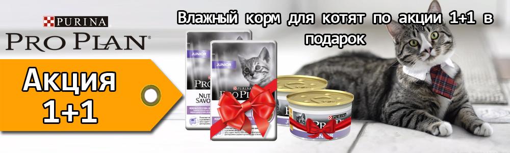 Pro Plan для котят влажный по акции 1+1 в подарок