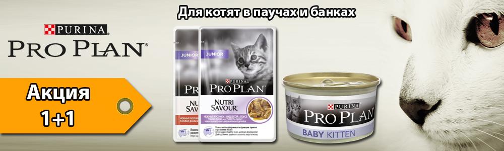 Pro Plan для котят по акции 1+1 в подарок
